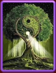 Levensboom-met-Yin-Yang